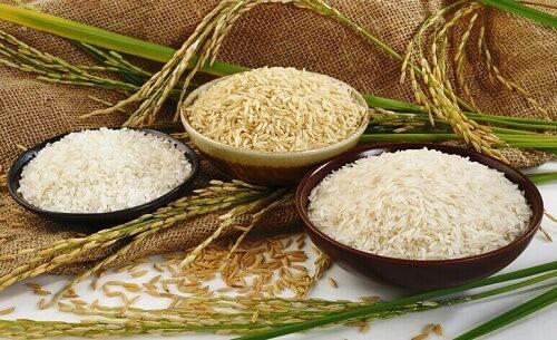 Chỉ số đường huyết của các loại gạo