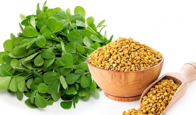 Hạt cỏ cari chữa bệnh tiểu đường