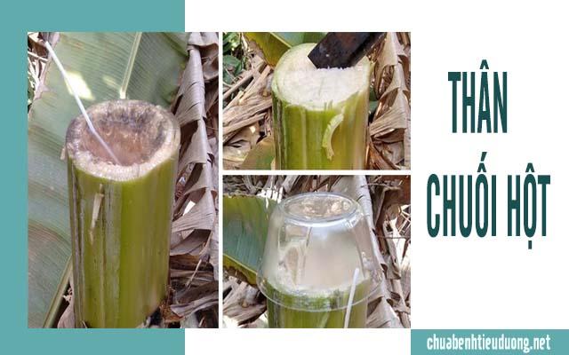 chữa bệnh tiểu đường bằng cây chuối hột