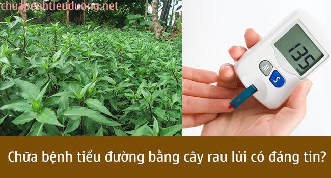 chữa bệnh tiểu đường bằng cây rau lủi